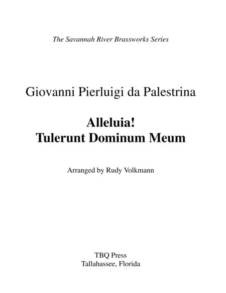 Alleluia! Tulerunt Dominum Meum