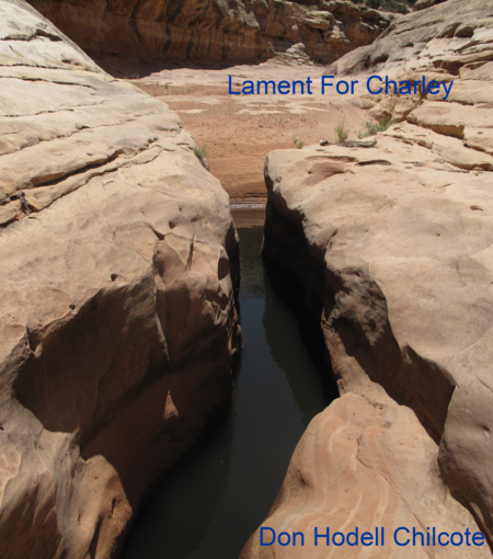 Lament For Charley