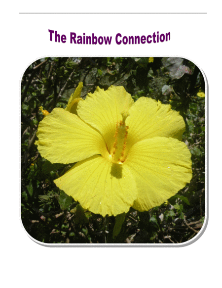 The Rainbow Connection by Paul Williams and Kenneth L. Ascher for Four Cellos
