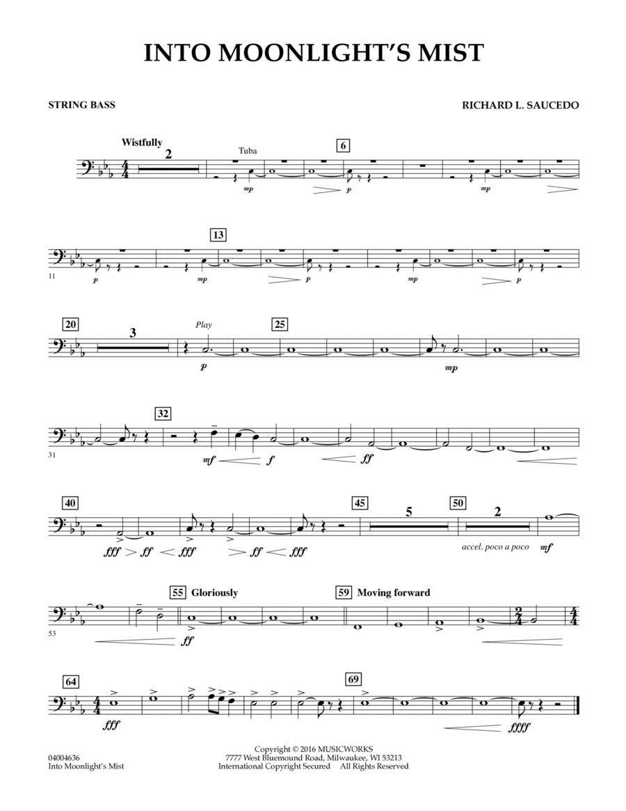Into Moonlight's Mist - String Bass
