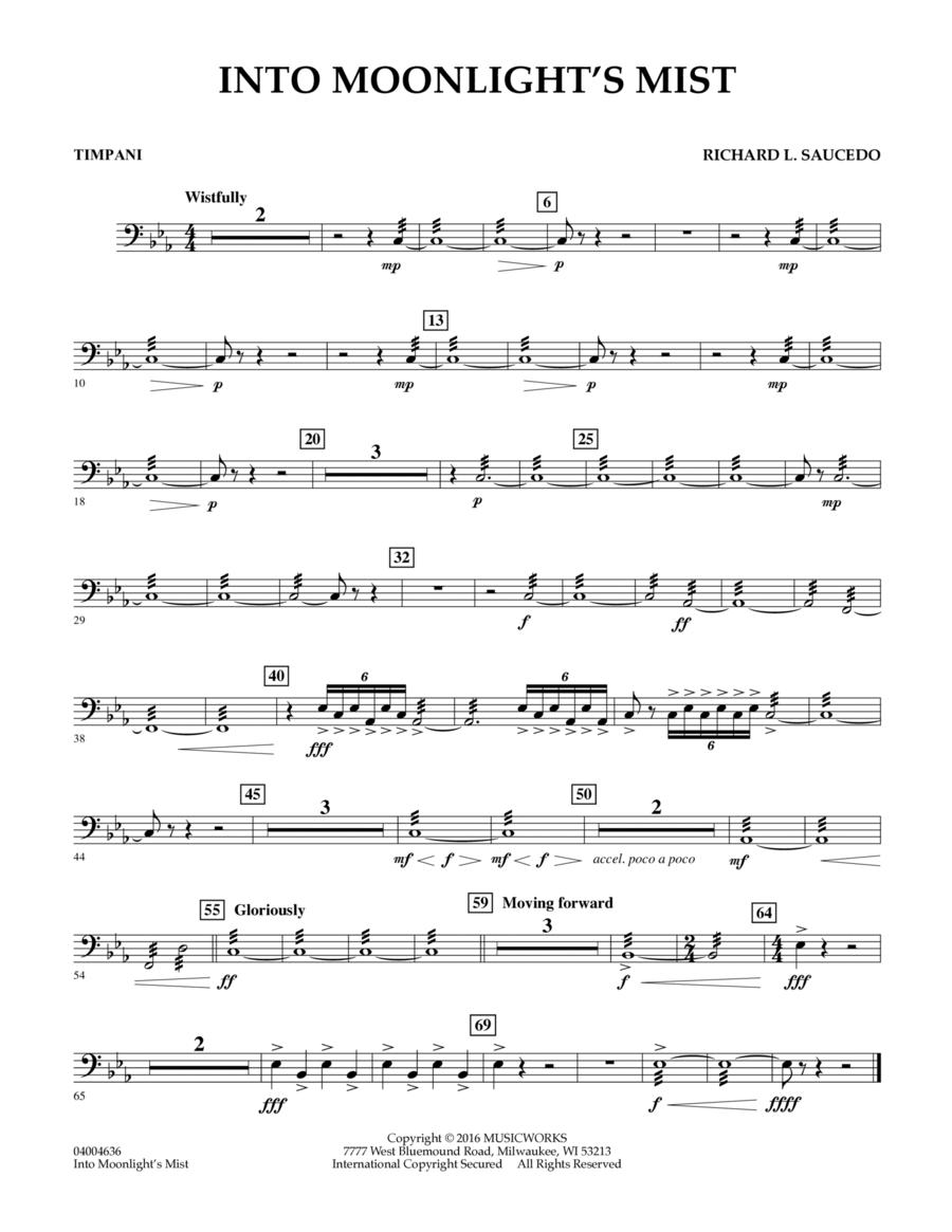 Into Moonlight's Mist - Timpani