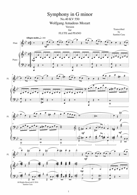 Mozart - Symphony in G minor No.40 mov. 1 Molto allegro -Flute and Piano