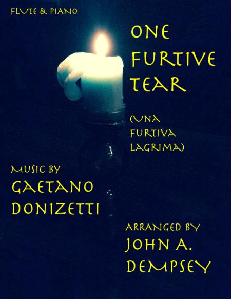 Una Furtiva Lagrima (One Furtive Tear): Flute and Piano Aria