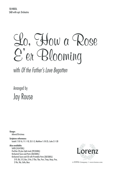 Lo, How a Rose E'er Blooming