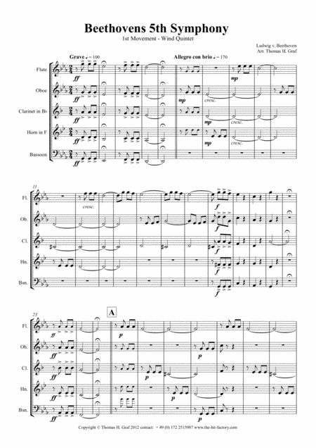 Beethovens 5th Symphony - 1st Movement - Wind Quintet