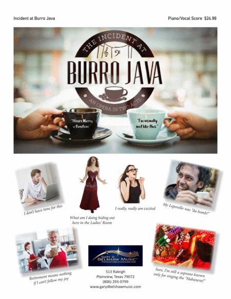 Incident at Burro Java