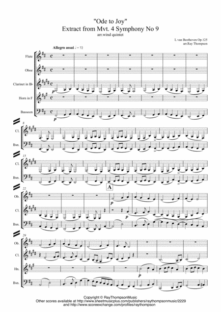 Beethoven: Symphony No.9 (Choral Symphony) Op.125 (Extract from Mvt.4)