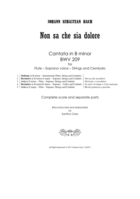 Bach - Non sa che sia dolore - Cantata BWV 209 for Flute, Soprano, Strings and Cembalo