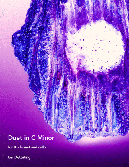 Duet in C Minor (for Clarinet and Cello)