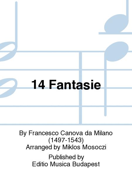 14 Fantasie