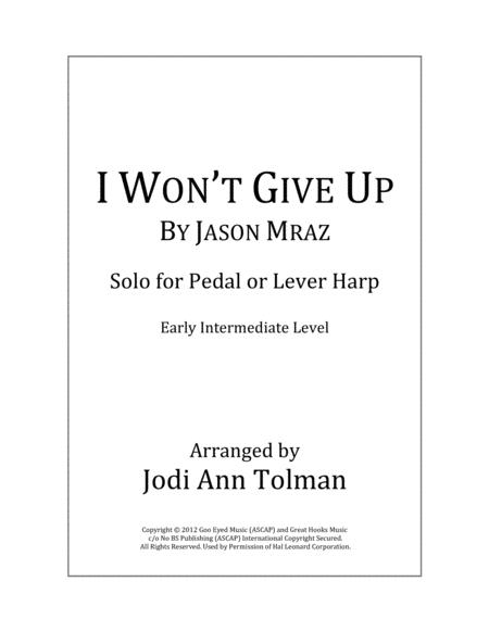 I Won't Give Up, Harp Solo