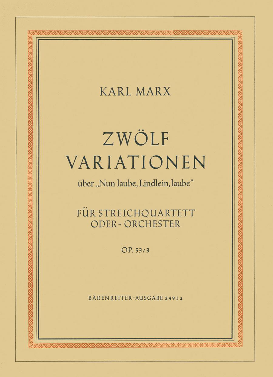 12 Variationen ueber