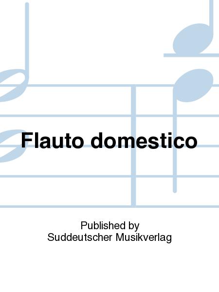 Flauto domestico