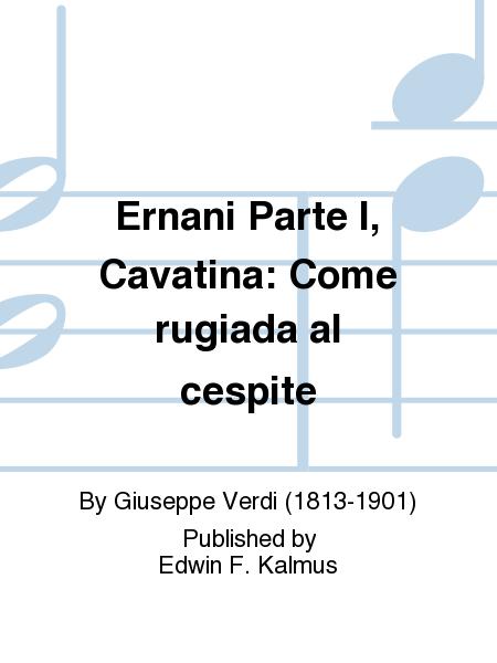 Ernani Parte I, Cavatina: Come rugiada al cespite
