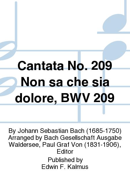 Cantata No. 209 Non sa che sia dolore, BWV 209