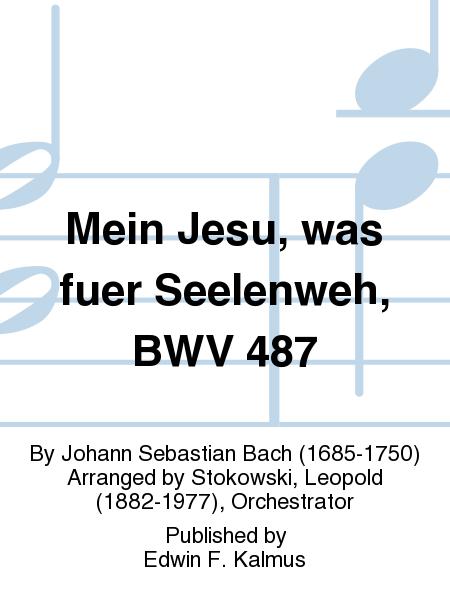 Mein Jesu, was fuer Seelenweh, BWV 487