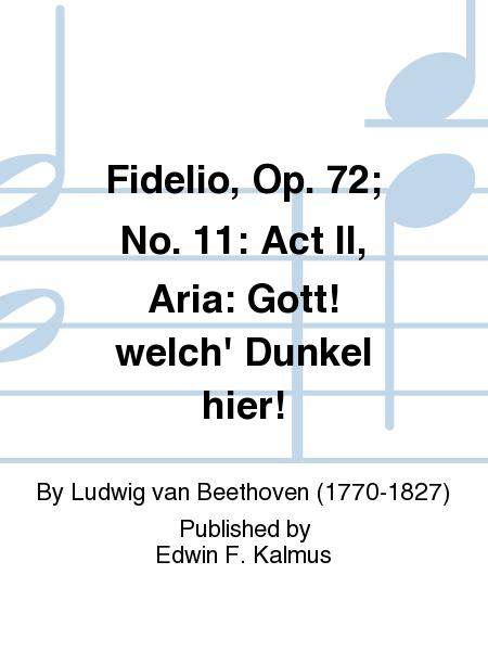Fidelio, Op. 72; No. 11: Act II, Aria: Gott! welch' Dunkel hier!