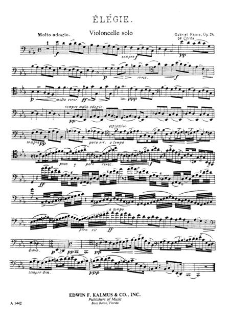 Elegy, Op. 24 [composer's transcription]