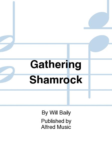 Gathering Shamrock