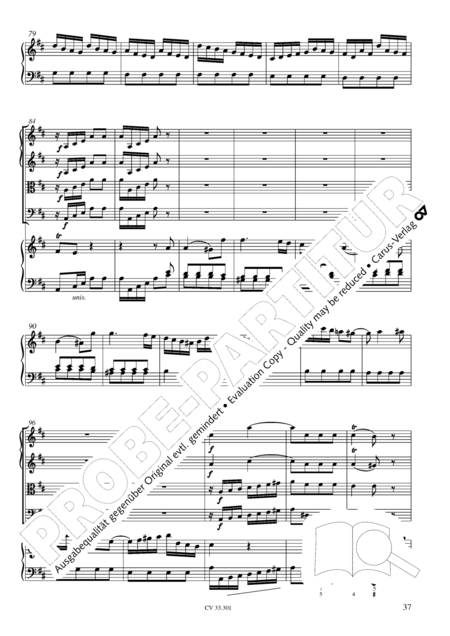 Cembalo Concerto in D major