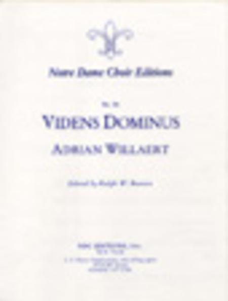 Videns Dominus