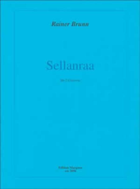 Rainer Brunn - Sellanraa