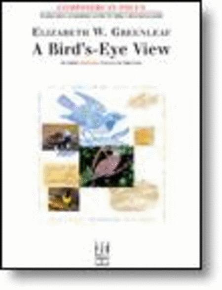 A Bird's-Eye View