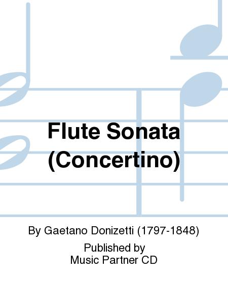 Flute Sonata (Concertino)