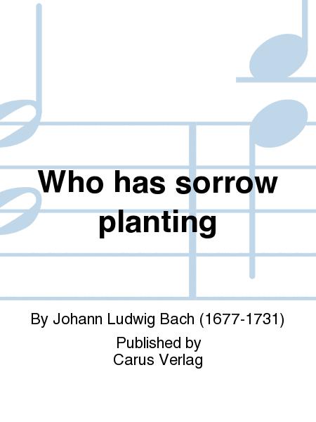 Who has sorrow planting