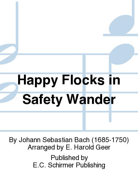 Happy Flocks in Safety Wander