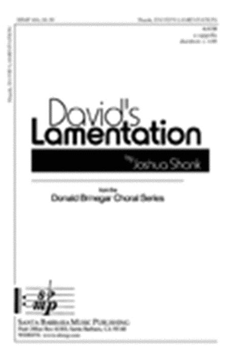 David's Lamentation