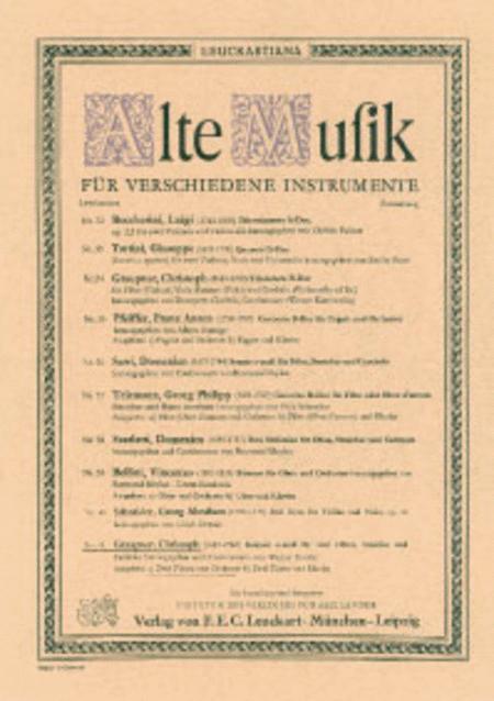 Konzert e-moll fur 2 Floten, Streicher und Cembalo