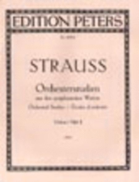 Orchestral Studies Vol. 2